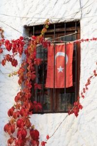 Bandeira turquia1